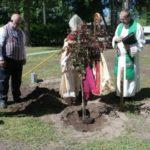 Kullamaal istutati reformatsiooni aastapäevaks õunapuu | Lääne Elu